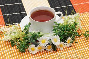 cup-tea-herbs-2657515