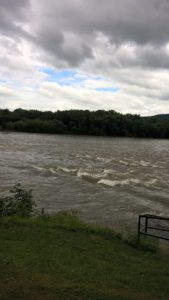 Susquehanna River 3 August 2018 by Jeanne Ruczhak-Eckman