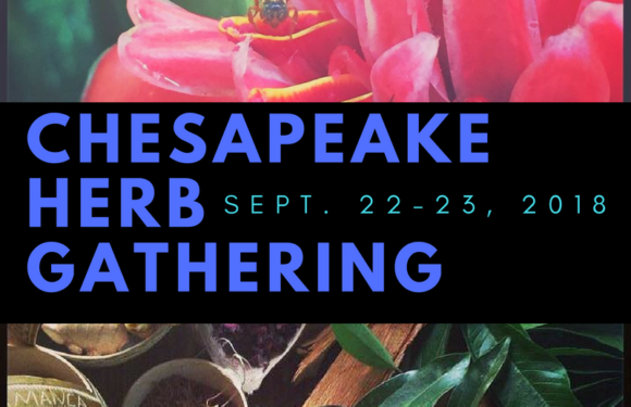 Chesapeake Herb Gathering this Weekend